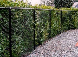 надежный забор из сетки рабицы